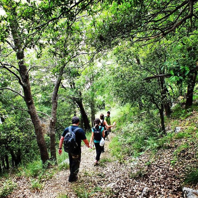 Hike with ProMax in Jabal Moussa this Sunday. Booking +9613955642... (Jabal Moussa Biosphere Reserve)